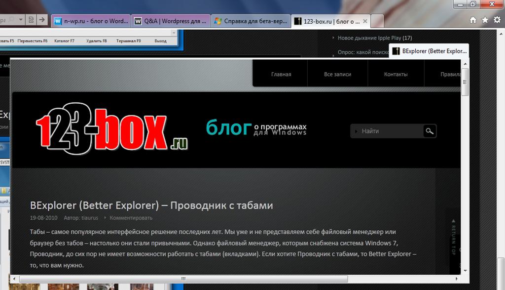 Internet Explorer 9 Beta - новый прорыв Microsoft или претензия на желтую майку лидера? (3)