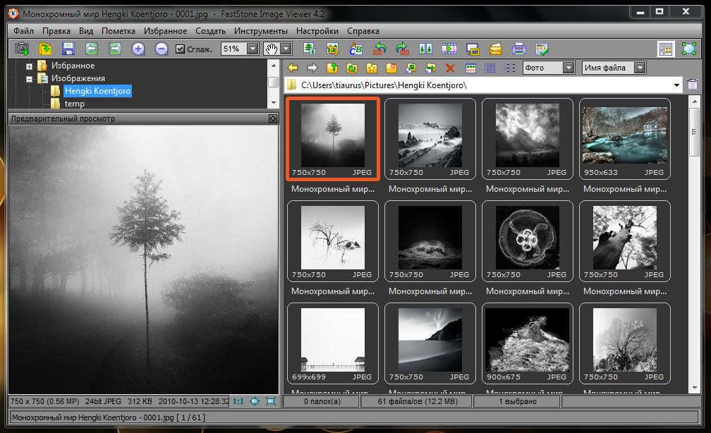 FastStone Image Viewer - быстрый, бесплатный, портабельный, многофункциональный просмотрщик изображений