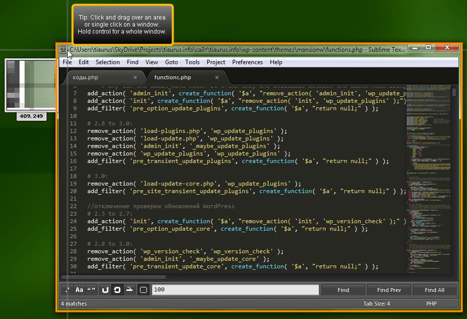 Free Screenshot Capture - удобная утилита для создания скриншотов и снимков с веб-камеры (8)