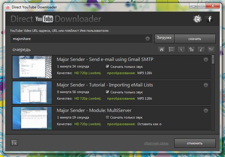 Direct YouTube Downloader - програма для скачивания из YouTube отдельных роликов и всех роликов из плейлистов и каналов (2)