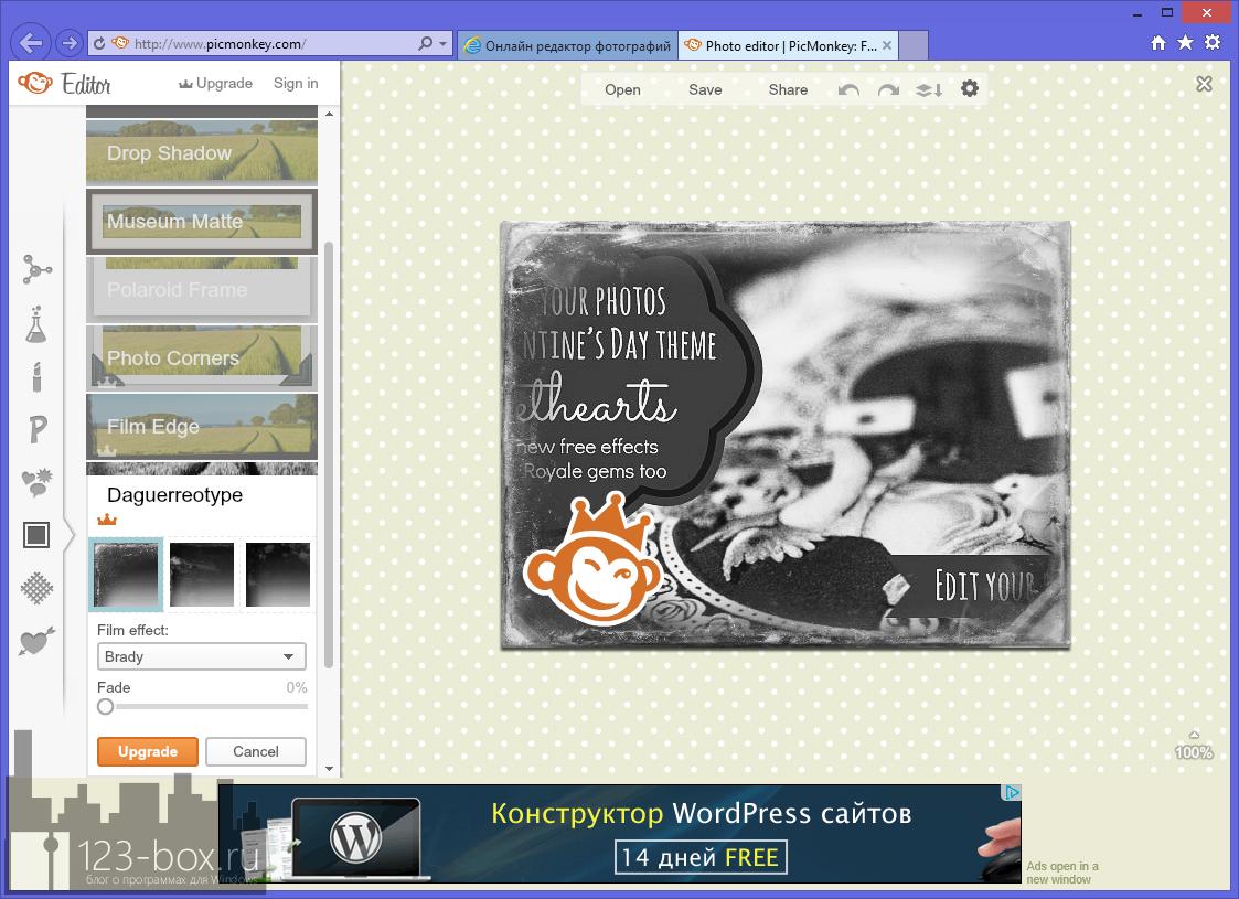 PicMonkey - удобный онлайновый фоторедактор с множеством встроенных эффектов и рамок (4)