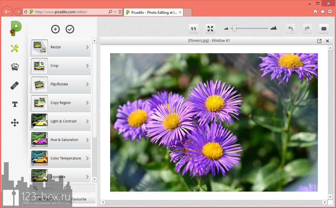 Picadilo - удобный онлайновый редактор изображений со множеством встроенных фильтров и эффектов (8)