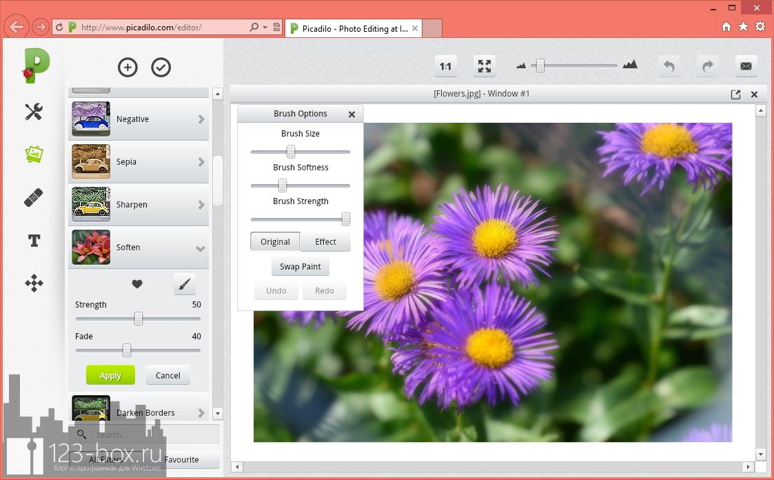 Picadilo - удобный онлайновый редактор изображений со множеством встроенных фильтров и эффектов (7)
