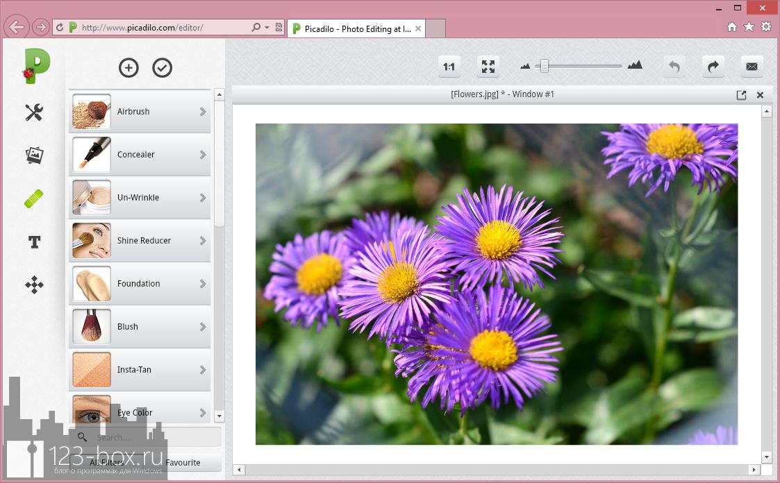 Picadilo — удобный онлайновый редактор изображений со множеством встроенных фильтров и эффектов