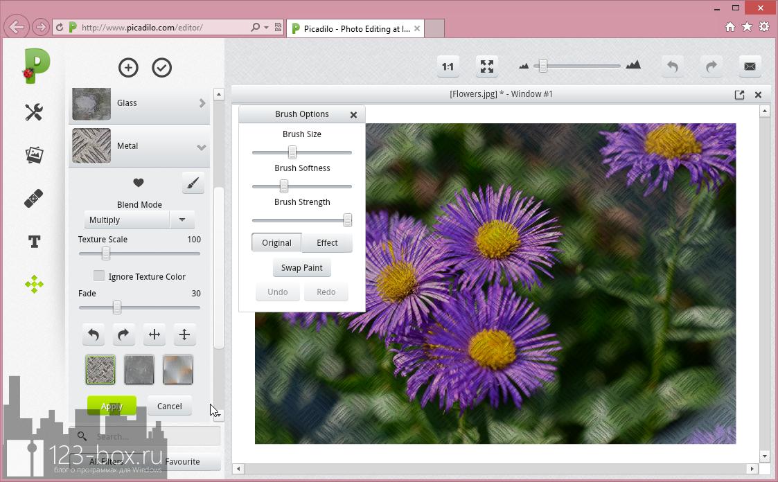 Picadilo - удобный онлайновый редактор изображений со множеством встроенных фильтров и эффектов (4)