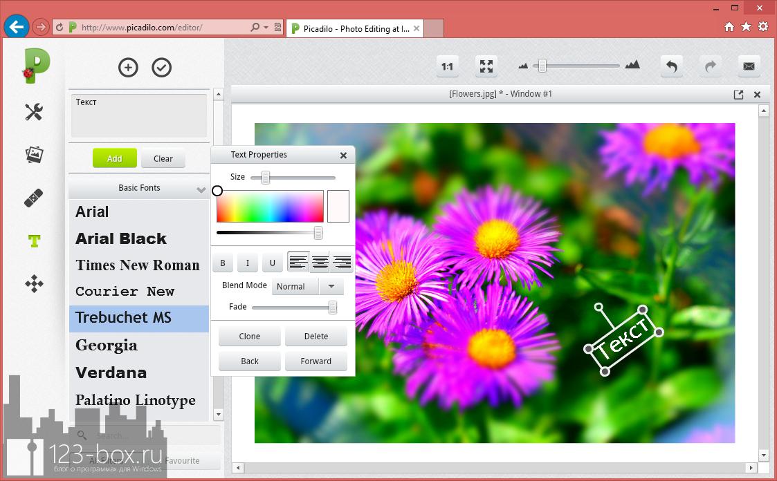 Picadilo - удобный онлайновый редактор изображений со множеством встроенных фильтров и эффектов (5)
