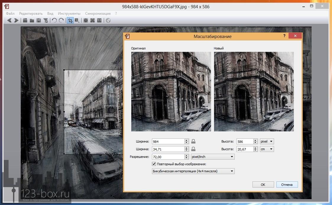Nomacs - портабельная программа для просмотра изображений с удобным управлением (3)